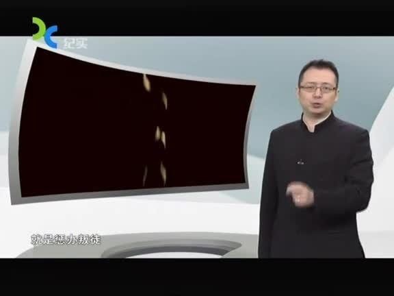 SMG档案 2015第305集精选