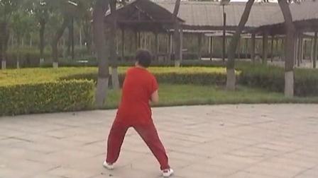 养生太极掌(第三套)杨燕迎