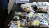 延吉破获特大收售野生动物案!共计142件制品,价格前后能翻百倍
