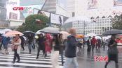 """台风""""博罗依""""袭日本致10人死数千人滞留成田机场"""