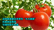 """这种蔬菜被日本誉为""""大力蔬菜"""",抗衰老延寿命"""