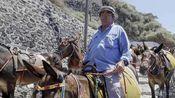 希腊景点道路狭窄 禁止肥胖游客骑驴观光