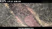 电影《风语咒》曝插曲MV 中国新说唱学员艾热热血献唱