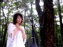【美咲】野川さくら_-_星の降る丘