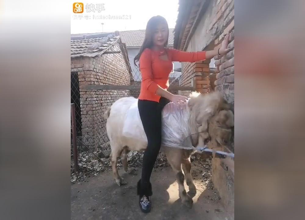 骑在羊背上长大的农村姑娘,有人愿意娶我吗?