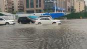 郑州暴雨伴有大风,树木被吹得左摇右摆