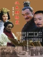 汉太尉杨震(动作片)