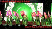 保定华中技工学校参加中国舞蹈嘉年华活动2017.11