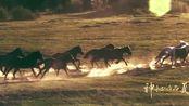 元昊的祖父开始,党项人就开始经营河西走廊,在祁连山下培训战马