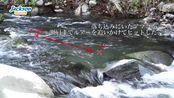 日本溪流鳟鱼钓行-Jackson トラウトアイテムで釣る!狩野川実釣後編! kawasemi-奏-cymo- eddy