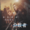 Insurgent Berlin Premiere Red Carpet - Shailene Woodley, Theo James & Robert Sch