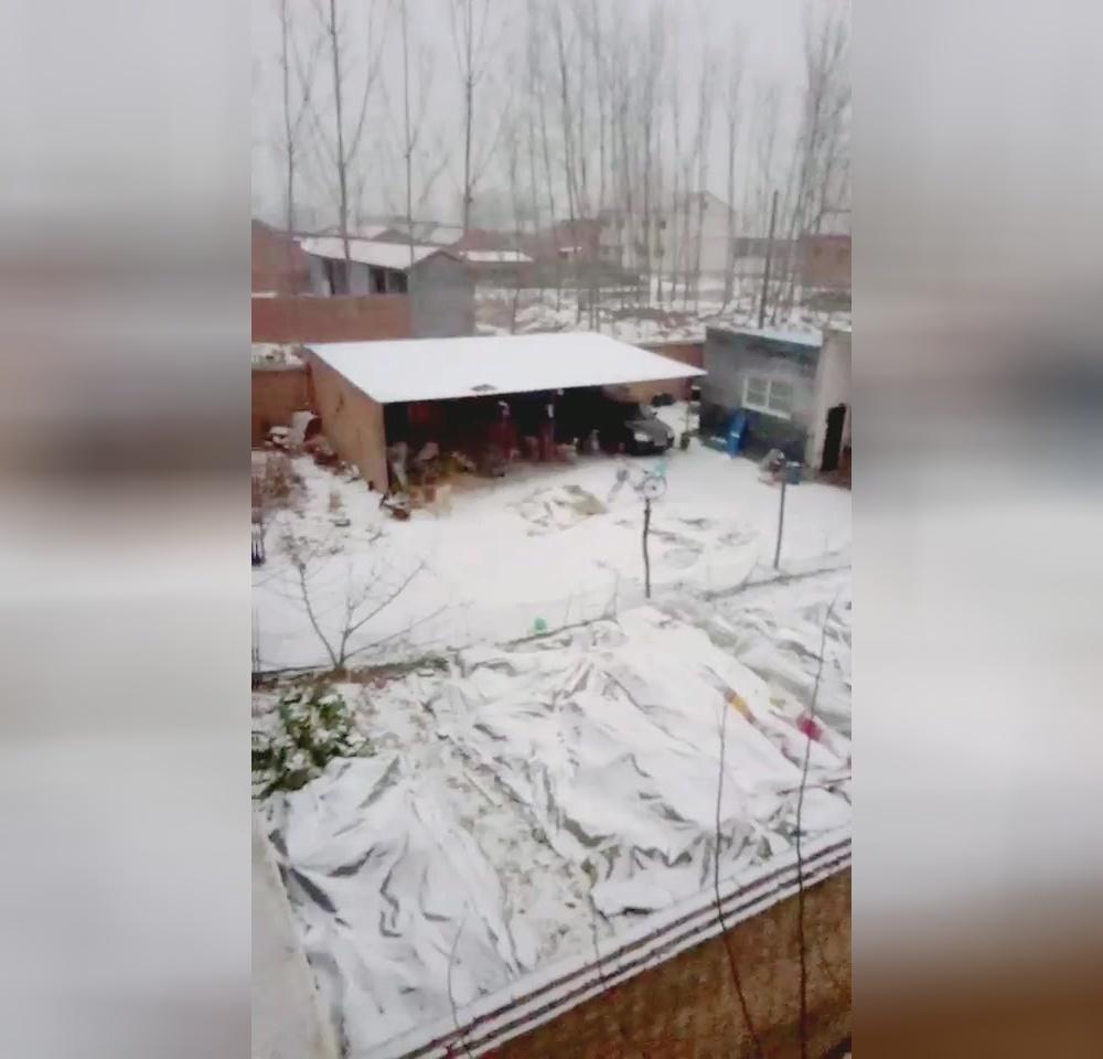 2017年我们村里的第一场雪
