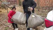 贵州大姐远嫁河南农村,18年了为什么只回过1次娘家?看大姐咋说