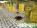 国外版CF搞笑片   摄影工作室 www.wtsy.com.cn