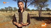 【ZDF】埃里克拯救长颈鹿【德语生肉】