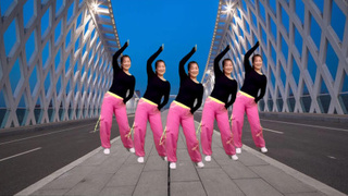 2019最新神曲广场舞《狂浪DJ》演唱:花姐