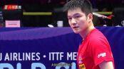 超级大心脏+2连冠!4-2逆转日本张本智和夺冠,樊振东为马龙复仇