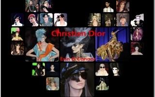 Erin O'Connor in Christian Dior