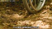 别让李光洙演傻子了,太像了!10分钟看韩国电影《我的一级兄弟》