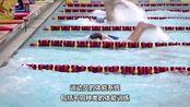 鲍勃·鲍曼游泳贴士 训练结构