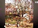 【当代形象画家-中国田园画家-村庄油画家-李素华-全球艺术家编码-1066-中华艺术平台】宋庄-春思-标清-03