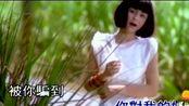 高胜美经典歌曲《追风的女儿》甜歌皇后最美的歌曲,难忘经典