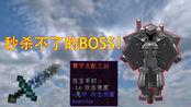 我的世界:钢铁守卫,寰宇支配之剑都秒杀不了的BOSS!