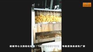全自动地瓜去皮机土豆水洗清洗机红薯自动削皮机小型削土豆皮机器