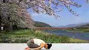 母其弥雅: 初级瑜伽教学