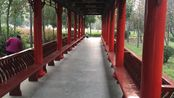 自驾游:路过平桥公园,就去里面看了一下,前面是琵琶台公园