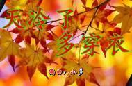 刘向圆的五千年送给你,愿你被温柔以待