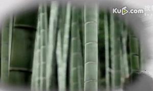 佛教音乐歌曲大全100首经典《盂兰盆节的