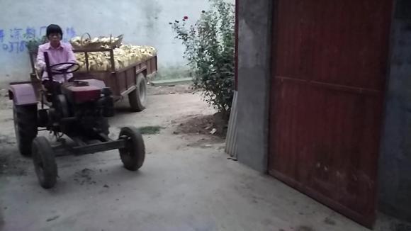 要不是大门宽,这位农村妇女能把拖拉机开进门我服她