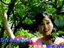 沪剧:小小一朵白兰花