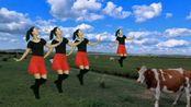 原创精美草原舞《我从草原来》嘹亮的歌声飘过大草原,心情太美