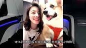 陈雅婷是全世界最幸福的女人,因为这个爱好让王思聪疯狂迷恋