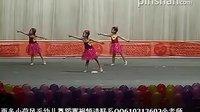 小荷风采幼儿舞蹈2