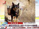 狼狗为开店女主人送货2年 运送4500瓶啤酒www.qu99.com