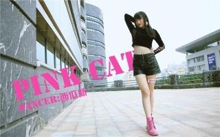 【西瓜新】PINK CAT