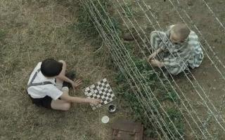 【红酒】几分钟看完种族灭绝《穿条纹睡衣的男孩》谁来为时代的悲剧歌唱?
