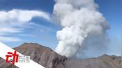 新西兰火山喷发两中国公民烧伤严重该岛曾一年吸引过万游客