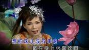韩宝仪一曲《碧兰村的姑娘 马兰山歌 爱我多深》好听