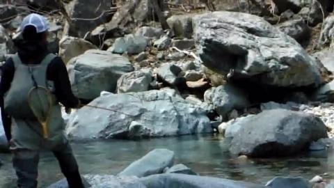 清清的小溪环境优美,在这钓鱼让人流连忘返