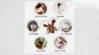 世博生物灭蟑螂视频
