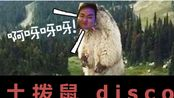 【六道ft. 防道少女团】土拨鼠disco ——我心中的六道【鬼畜初投稿】