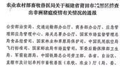 福建莆田城厢区排查出非洲猪瘟疫情 已得到有效处置