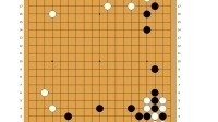 AlanGO围棋中国流布局第二型,高挂飞应外扳