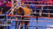 最新世界拳王争霸赛:科瓦列夫vs阿尔瓦雷斯