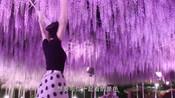 """《今夜在浪漫剧场》""""情有独钟""""预告片-绫濑遥"""