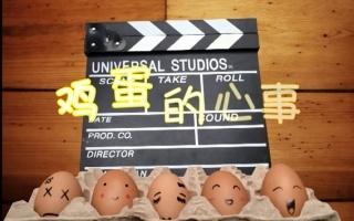 【Single郑】鸡蛋的心事